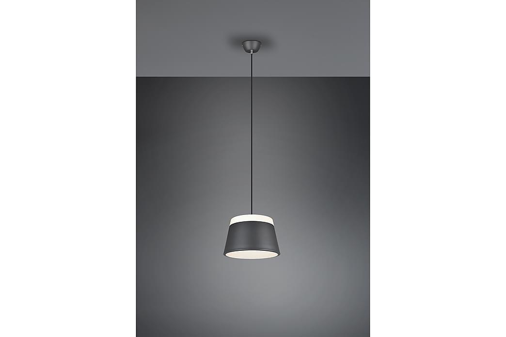 Pendellampa Baroness Grå - Trio Lighting - Belysning - Inomhusbelysning & Lampor - Taklampa