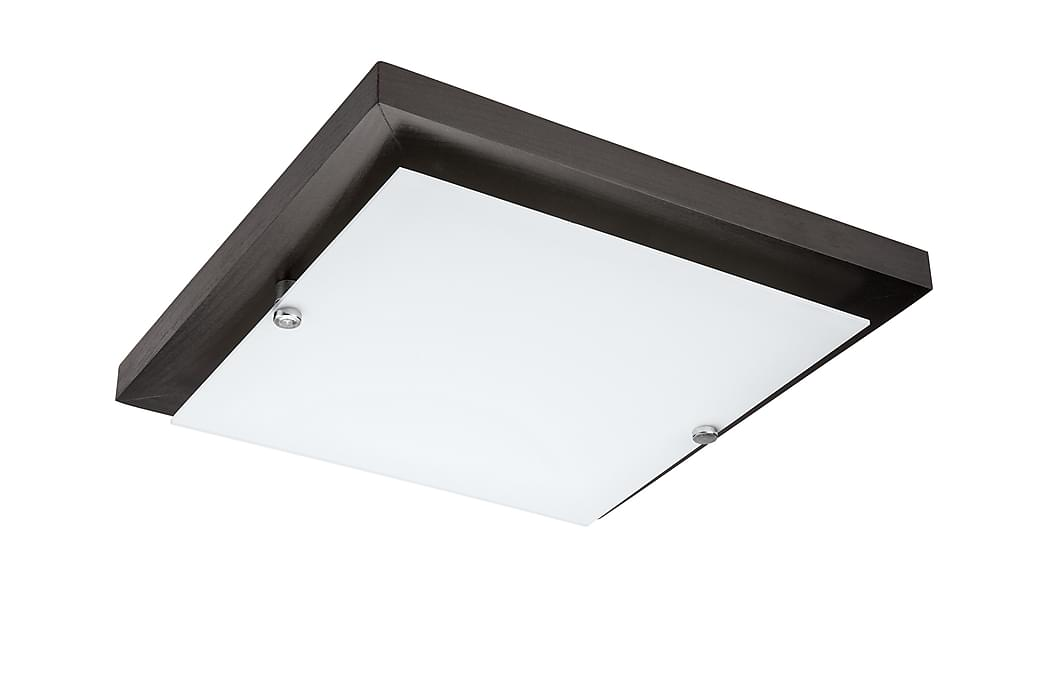 Plafond Eterna - Wenge - Belysning - Inomhusbelysning & Lampor - Taklampa