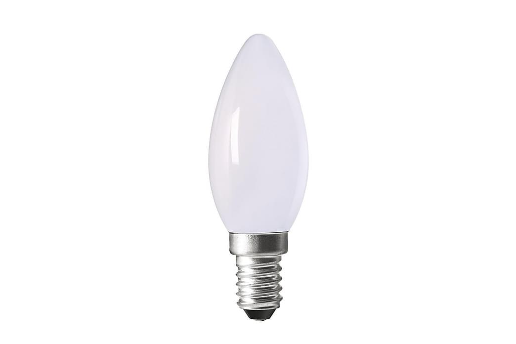 Pearl LED Filament Opal - PR Home - Belysning - Glödlampor & ljuskällor - LED-belysning