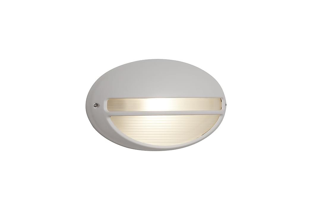 Utelampa LED 60W Wb/Flush Oval Vit - Searchlight - Belysning - Utomhusbelysning - Fasadbelysning