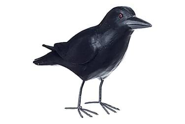 Korp Corvus Trä