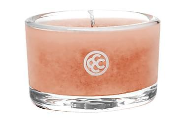 Doftljus Glass Tealight Tropical Nectar