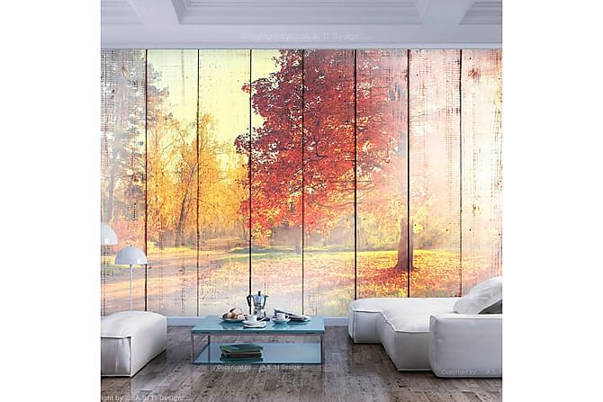 Fototapet Autumn Sun 200x140 - Finns i flera storlekar - Inredning - Tapeter - Fototapeter