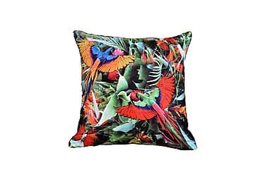 Kuddfodral Akka 50x50 Parrots