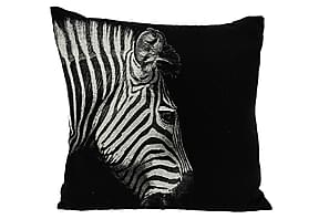 Kudde Zebra