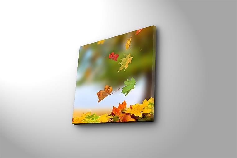 Canvastavla Flerfärgad - 45x45 cm - Inredning - Väggdekor - Canvastavlor