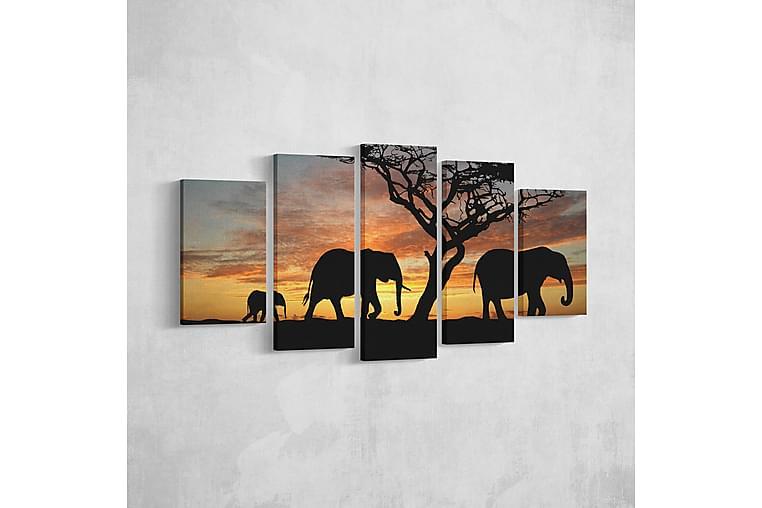 Elefant Ramverk - Homemania - Inredning - Väggdekor - Canvastavlor