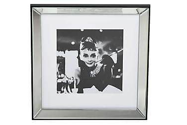 Tavla Belarbo Audrey Hepburn