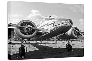 Tavla Canvas Plane