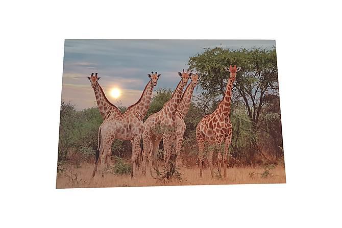Tavla Led Safari Giraff 60x40 cm - Inredning - Väggdekor - Canvastavlor