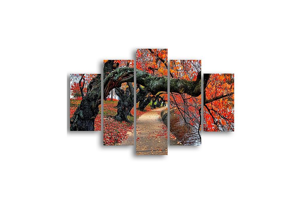Träd Ramverk - Homemania - Inredning - Väggdekor - Canvastavlor