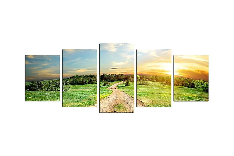 Canvastavla Nature 5-pack Flerfärgad - 20x60 cm - Inredning - Väggdekor - Posters