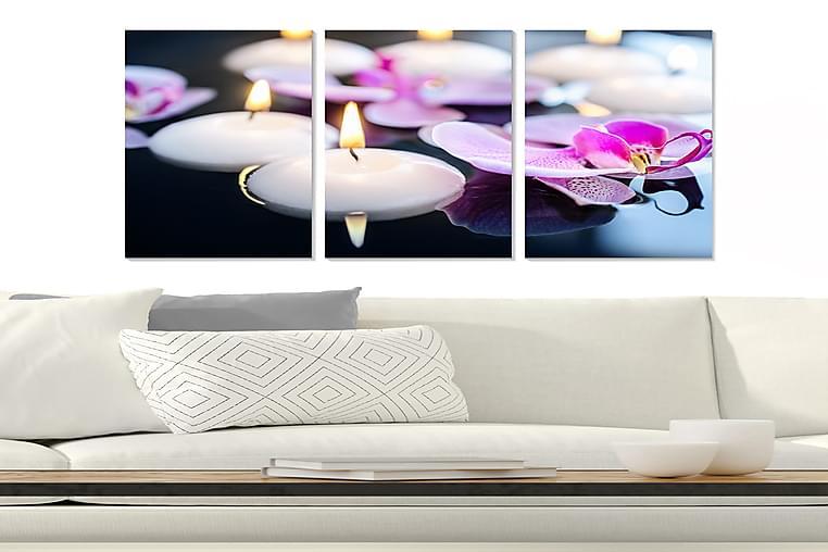 Tavla Floral 3-pack Flerfärgad - 20x50 cm - Inredning - Väggdekor - Posters