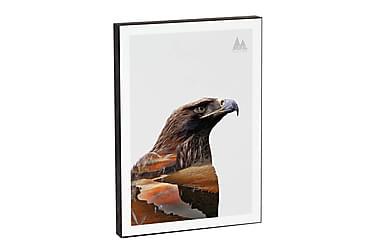 Eagle 3-D tavla 21*15*2