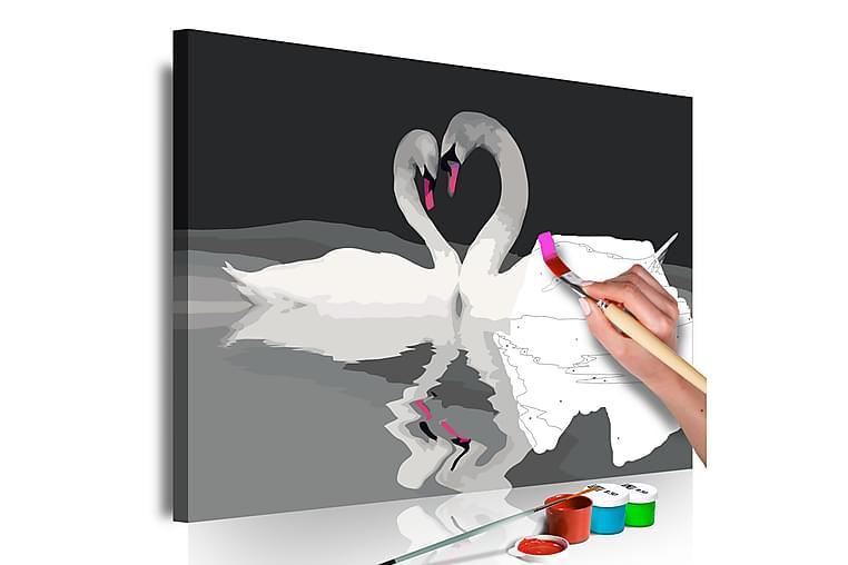 Gör-det-själv Målningar Swan Couple 60x40 cm - Inredning - Väggdekor - Tavlor & konst