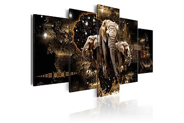 Tavla Brown Elephants 200x100