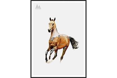 Tavla Horse 50x70 cm