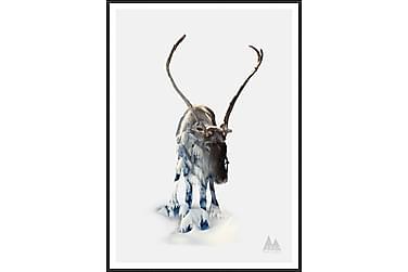 Tavla Reindeer 50x70 cm