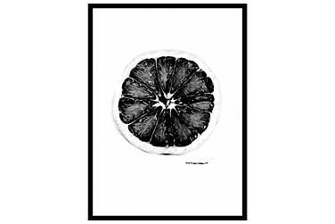 Poster Black Grape