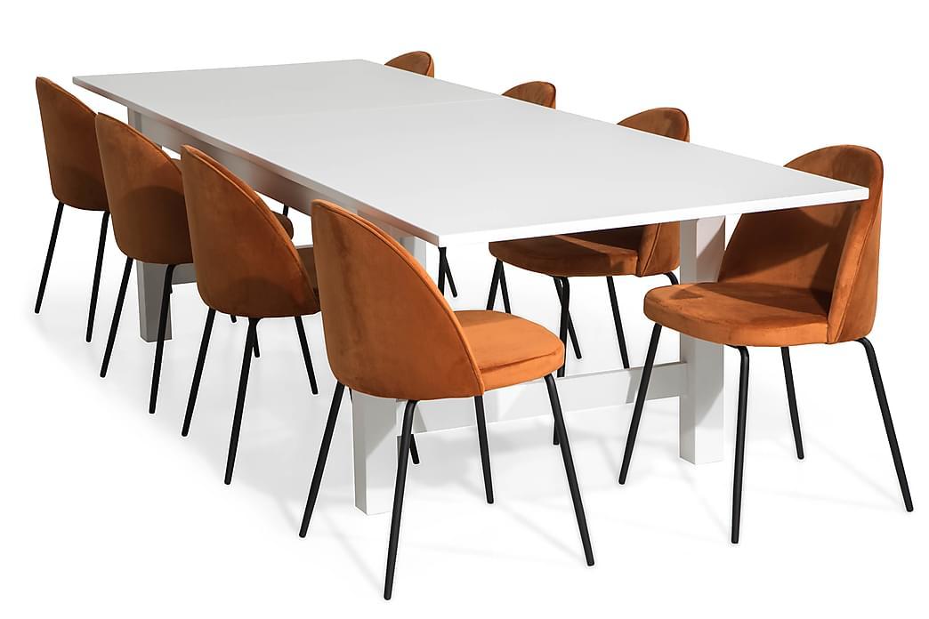 Matgrupp Isadora Förlängningsbart med 8 Stol Gerardo Sammet - Vit Orange Svarta Ben - Möbler - Matgrupper - Rektangulär matgrupp