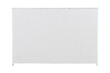 Dynbox Aranos 150x90x100.5